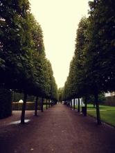 Rosenborg Castle trees