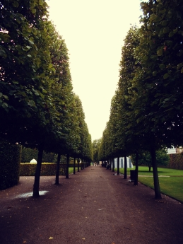 Rosenborg Castle trees
